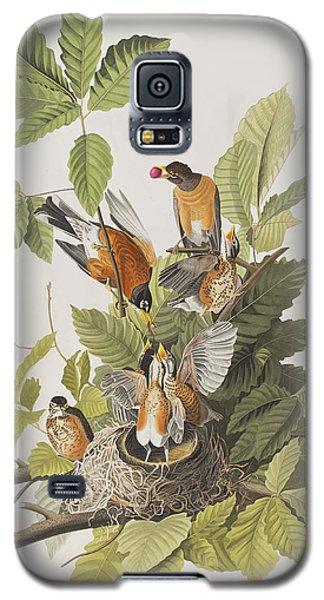 American Robin Galaxy S5 Case