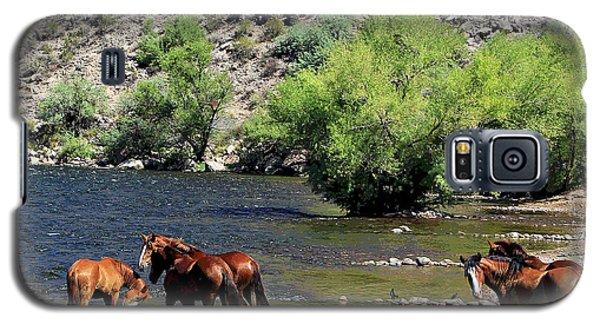 Arizona Wild Horses Galaxy S5 Case