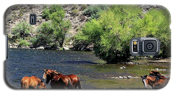 Arizona Wild Horses Galaxy S5 Case