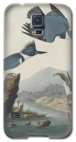 Belted Kingfisher Galaxy S5 Case by Anton Oreshkin