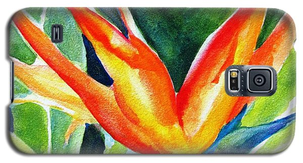 Bird Of Paradise  Galaxy S5 Case