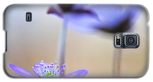 Blue Spring Wild Flower Galaxy S5 Case by Dirk Ercken