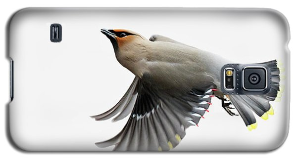 Galaxy S5 Case featuring the photograph Bohemian Waxwing  by Mircea Costina Photography