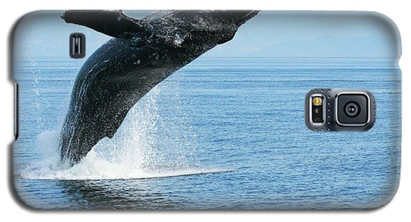 Breaching Humpback Whales Happy-1 Galaxy S5 Case