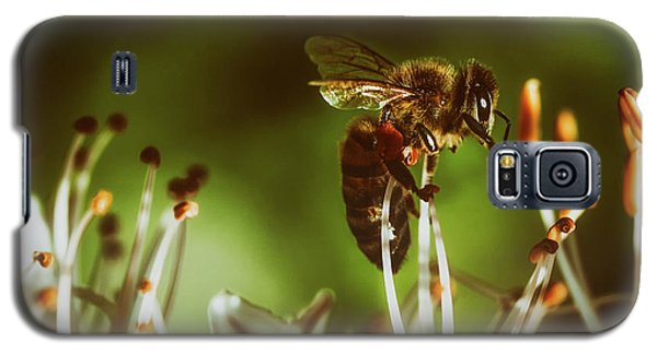 Galaxy S5 Case featuring the photograph Bzzz by Michael Siebert
