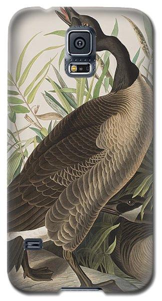 Canada Goose Galaxy S5 Case by John James Audubon