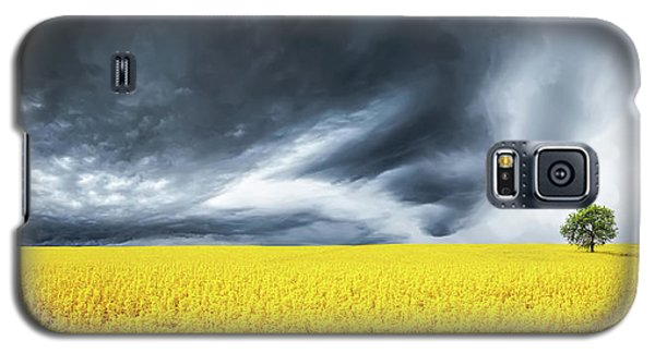 Galaxy S5 Case featuring the photograph Canola Field by Bess Hamiti