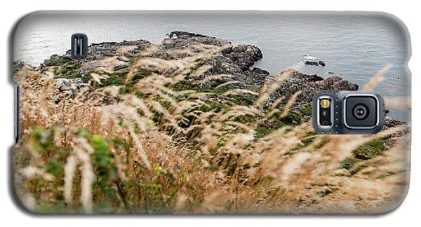 Cliffs At Kullaberg Galaxy S5 Case
