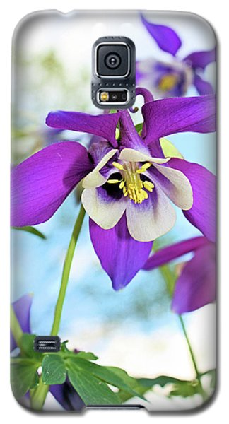 Galaxy S5 Case featuring the photograph Columbine by Kristin Elmquist
