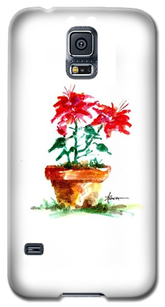 Cracked Pot  Galaxy S5 Case