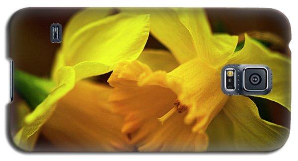 2 Daffodils Galaxy S5 Case