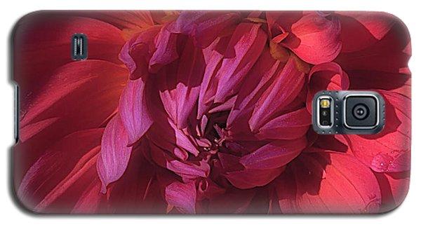 Dahlia 'wyn's King Salmon' Galaxy S5 Case