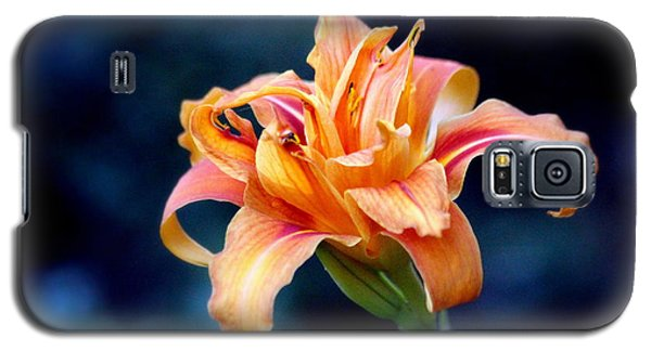 Galaxy S5 Case featuring the photograph Day Lily by Irina Hays