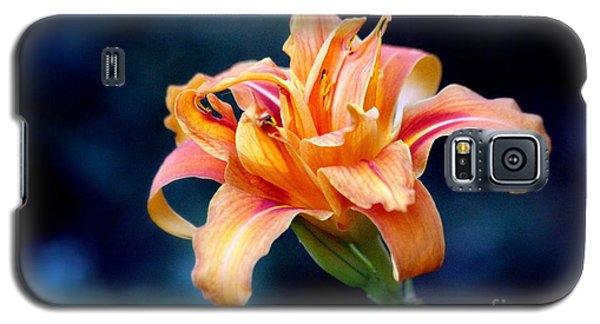 Day Lily Galaxy S5 Case by Irina Hays