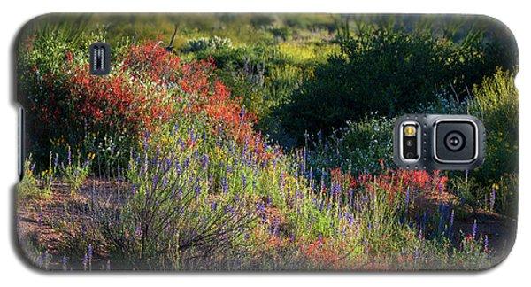 Galaxy S5 Case featuring the photograph Desert Wildflowers  by Saija Lehtonen