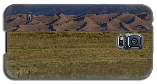 Sangre De Cristo Galaxy S5 Case - Eight Point Buck In The Grass Lands Of The Great Sand Dunes by Bridget Calip