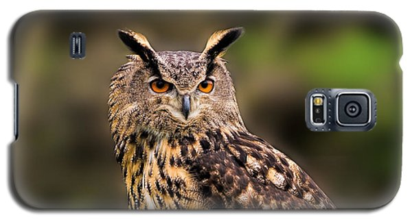 Eurasian Eagle Owl Perched On A Post Galaxy S5 Case
