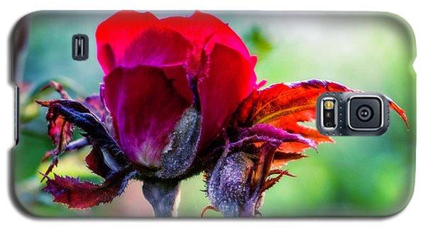 Fading Beauty Galaxy S5 Case