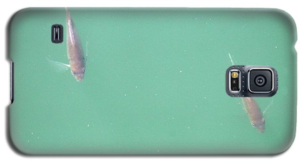 Galaxy S5 Case featuring the photograph 2 Fish In A Pond by Paul SEQUENCE Ferguson             sequence dot net