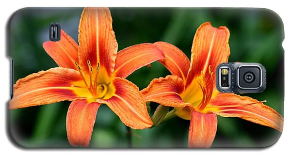 2 Flowers In Side By Side Galaxy S5 Case by Paul SEQUENCE Ferguson             sequence dot net