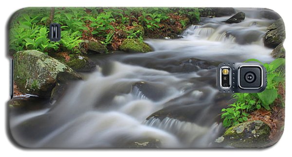 Forest Stream In Spring Galaxy S5 Case by John Burk