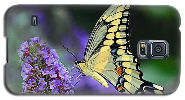 Giant Swallowtail Galaxy S5 Case
