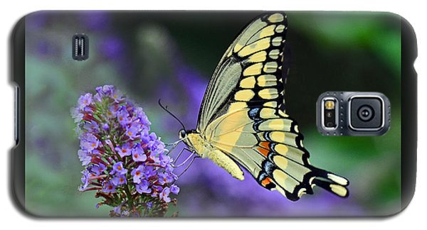 Giant Swallowtail Galaxy S5 Case by Rodney Campbell