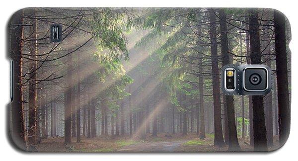 God Beams - Coniferous Forest In Fog Galaxy S5 Case by Michal Boubin