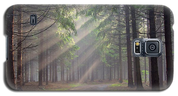 God Beams - Coniferous Forest In Fog Galaxy S5 Case
