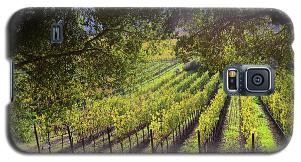 Grapevines In The Fall Galaxy S5 Case