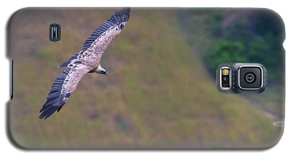 Griffon Vulture Flying, Drome Provencale, France Galaxy S5 Case