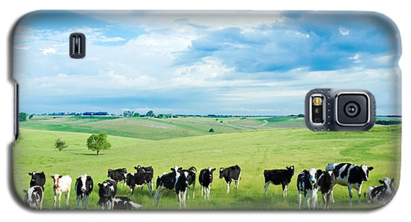 Cow Galaxy S5 Case - Happy Cows by Todd Klassy