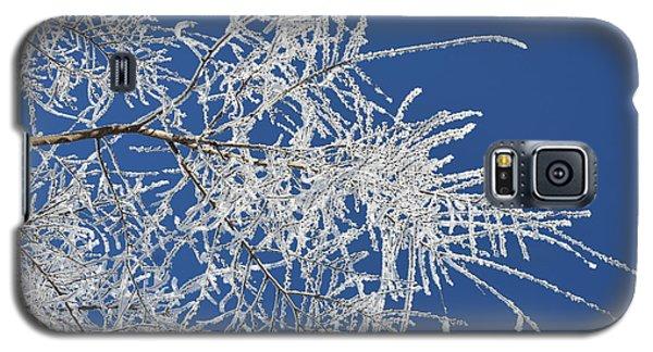 Hoar Frost Galaxy S5 Case