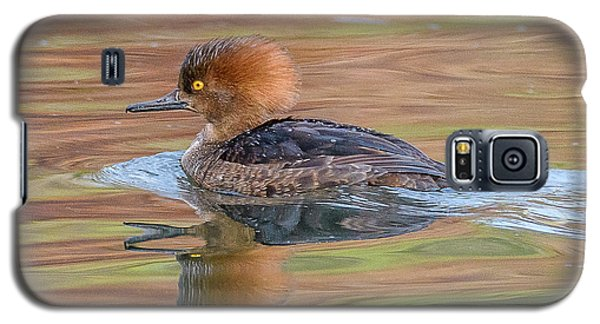 Hooded Merganser Galaxy S5 Case by Jerry Cahill
