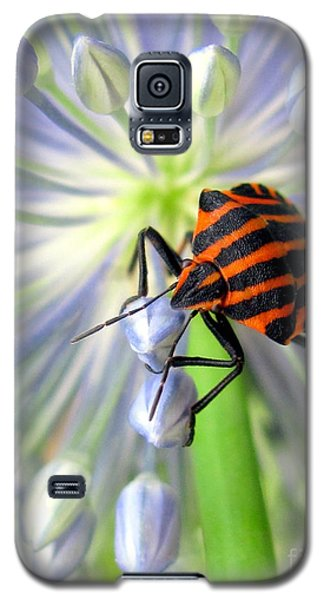 Galaxy S5 Case featuring the photograph June by Irina Hays