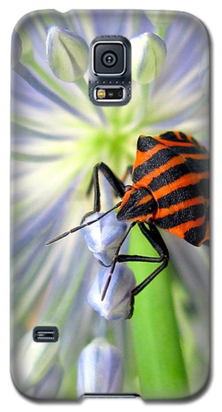 June Galaxy S5 Case by Irina Hays