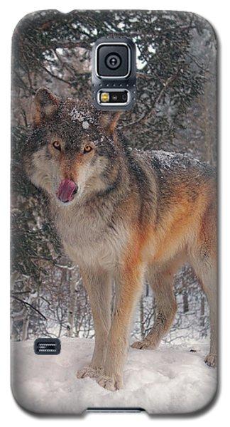 Keara  Galaxy S5 Case