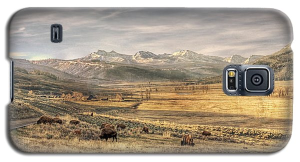 Lamar Valley Galaxy S5 Case by CR  Courson