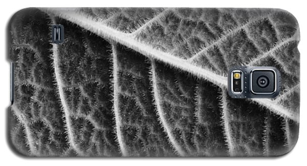 Galaxy S5 Case featuring the photograph Leaf by Chevy Fleet