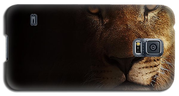 Galaxy S5 Case featuring the photograph Lion by Christine Sponchia