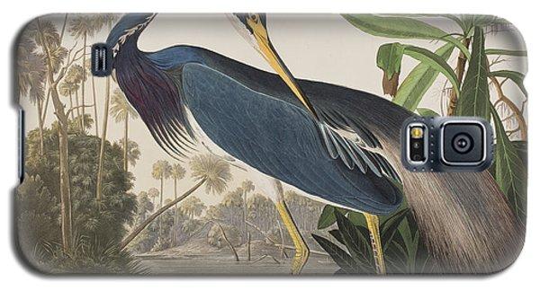Audubon Galaxy S5 Case - Louisiana Heron  by John James Audubon