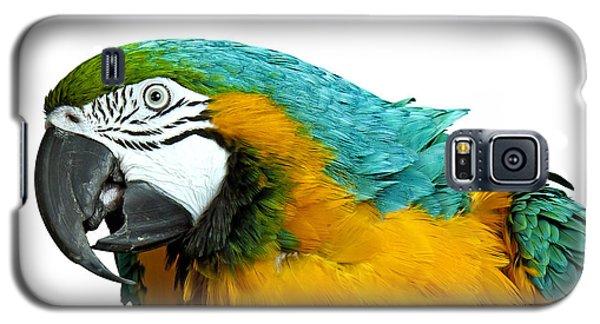 Macaw Bird Galaxy S5 Case