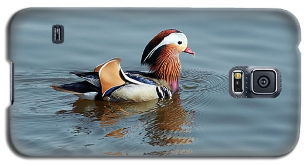 Galaxy S5 Case featuring the photograph Mandarin Duck by Michal Boubin