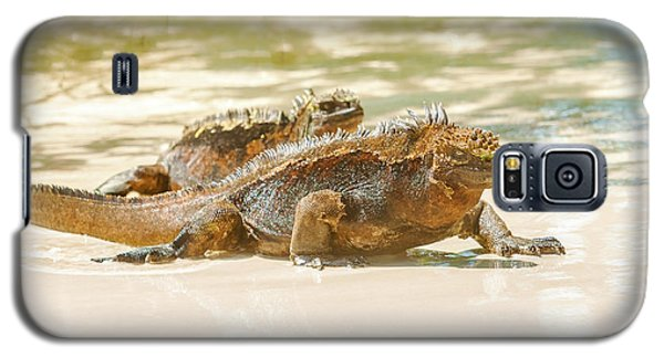 Marine Iguana On Galapagos Islands Galaxy S5 Case