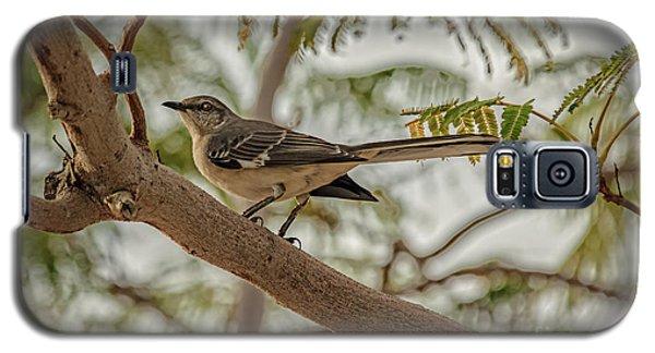 Mockingbird Galaxy S5 Case - Mockingbird by Robert Bales