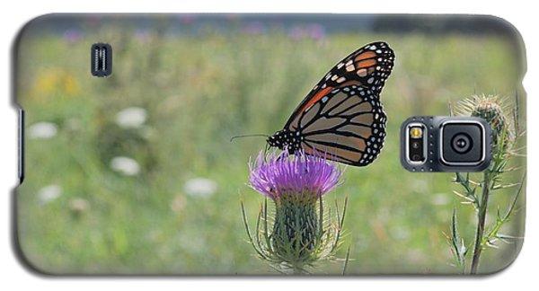 Mountain Meadow Monarch Galaxy S5 Case
