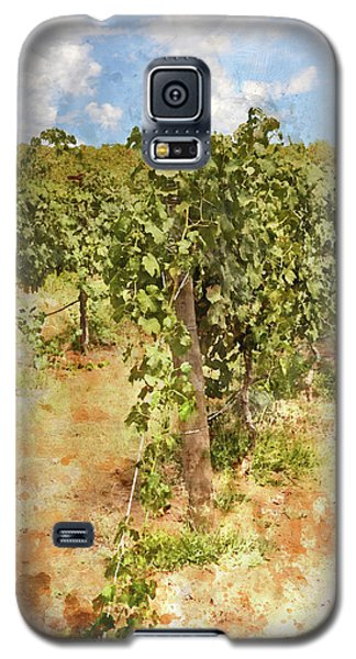 Napa Vineyard In The Spring Galaxy S5 Case