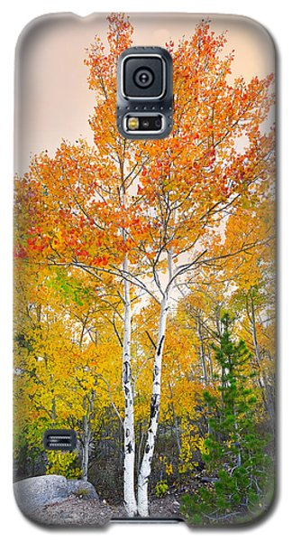 Galaxy S5 Case featuring the photograph Only A Memory by Tim Reaves
