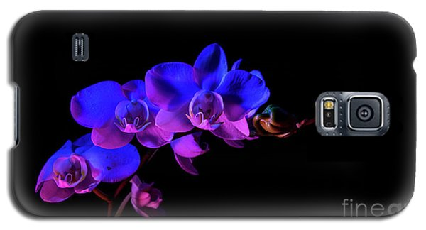 Orchid Galaxy S5 Case by Brian Jones
