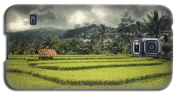 Galaxy S5 Case featuring the photograph Paddy Field by Charuhas Images